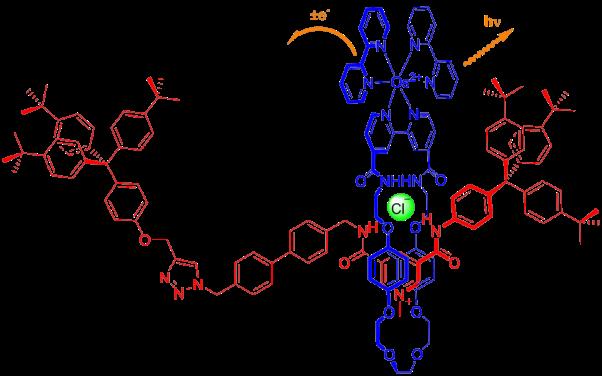 Figure 1 for website.cdx